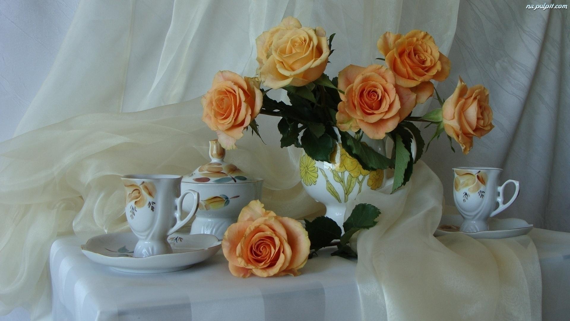 Роза  Rosa фото условия выращивания уход и размножение